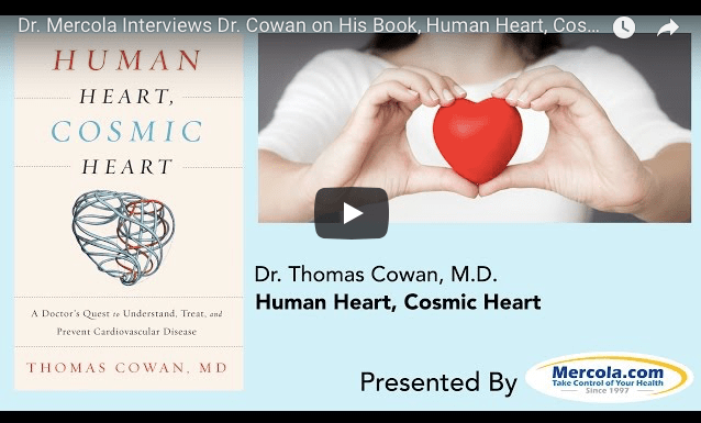 What's the Real Cause of Heart Attacks? / A New Way of Looking at Heart Disease and Novel Treatment Options / What You Really Need to Know About Heart Disease and Its Treatment by Dr. Thomas S. Cowan at mercola.com